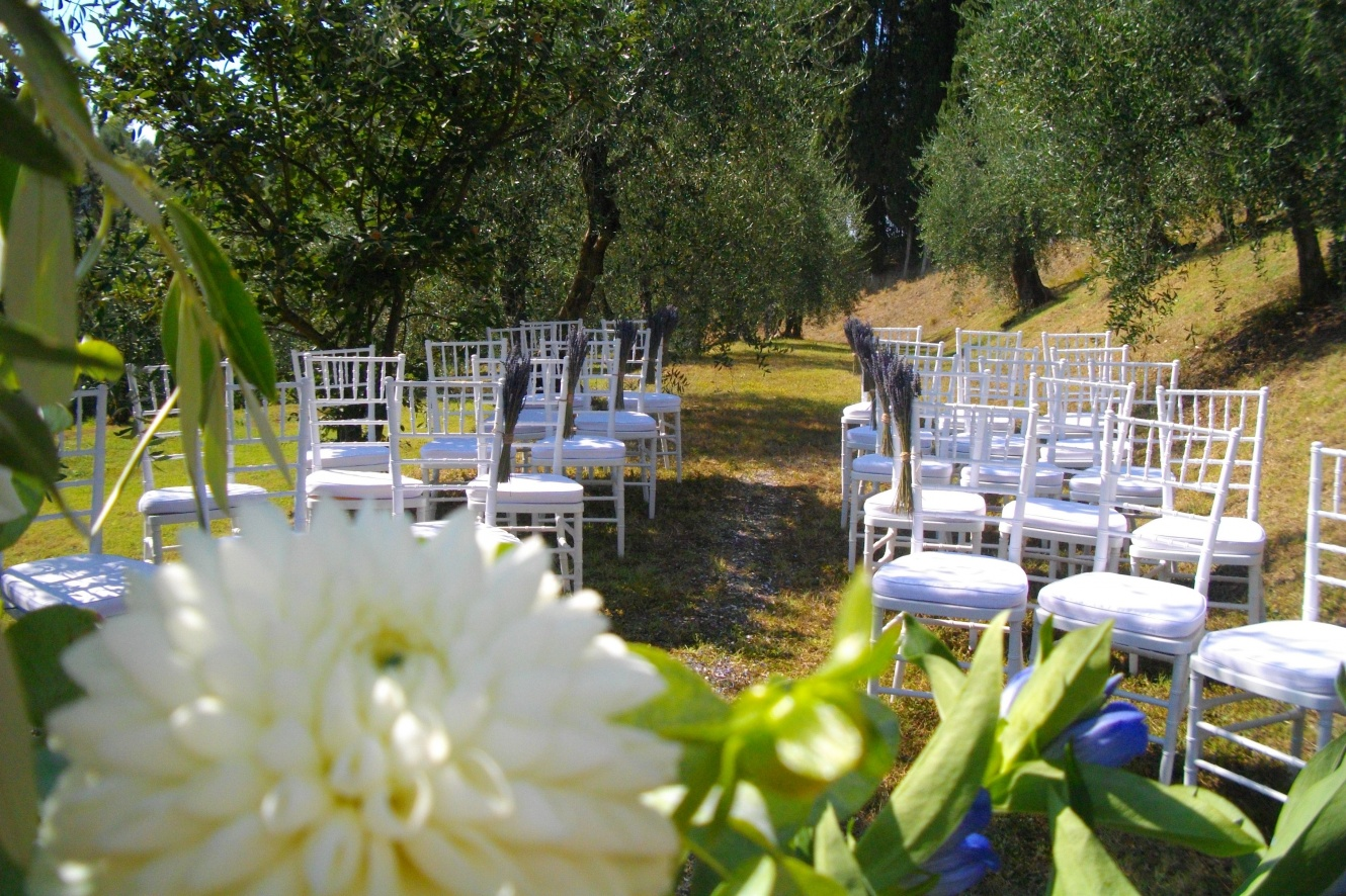 dream-wedding-ceremonies